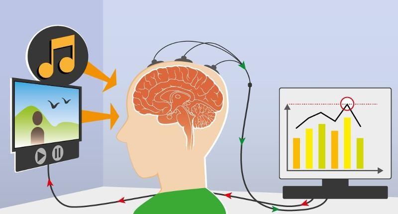 neurofeed
